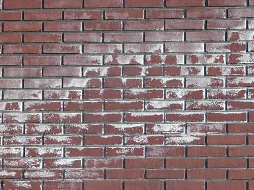 gevel zoutuitbloeiing, gevel kalkafzetting, muur zoutuitbloeiing, muur kalkafzetting, cementsluiter